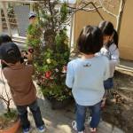 クリスマス飾りつけ(2)050